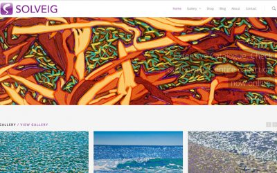 Solveig launches new website