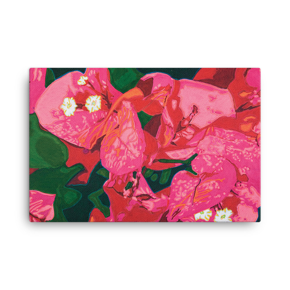 Canvas Print – Bouganvillea