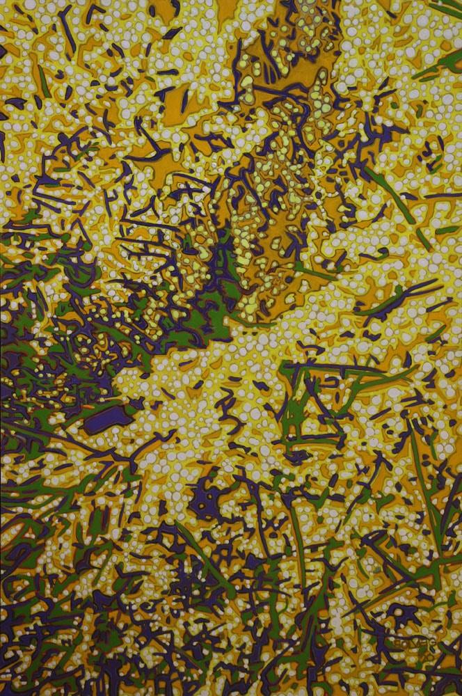 Wattle – Say it with Flowers Series – Original